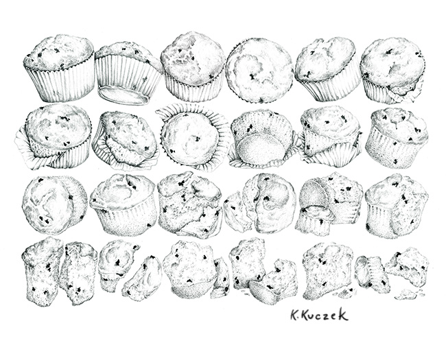 Pencil drawing - Blueberry Muffin in transition