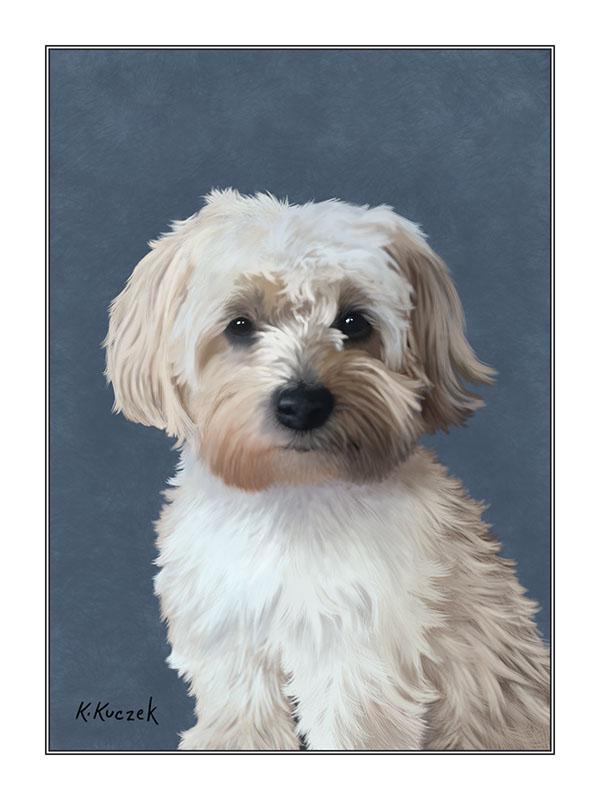 Pet Portrait Illustration 6x8