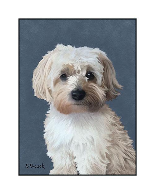 Pet Portrait Illustration 8x10
